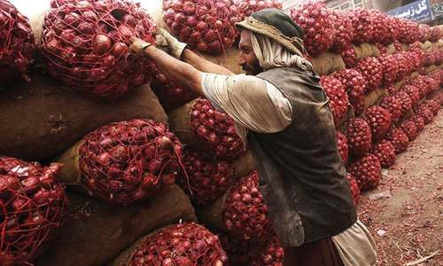 Export of onion, PPE banned