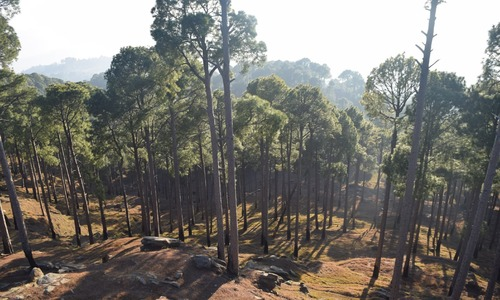 I took a trip to Kotli Sattian and Karor and here's everything that made it special