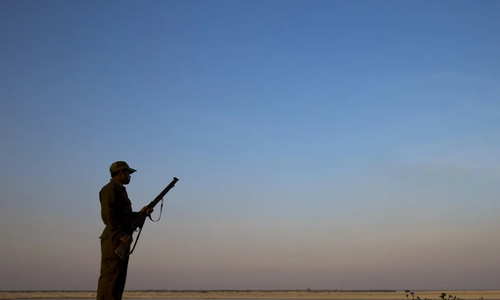 Poaching spikes amid lockdown in South Asia