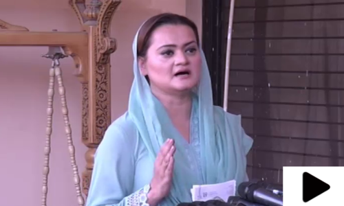 'وزیراعظم عمران خان کو پاکستان پر مسلط کیا گیا'
