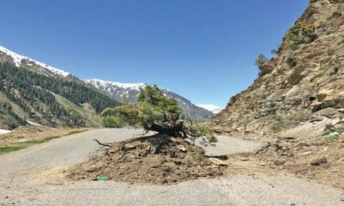 Kaghan growers demand reopening of key road
