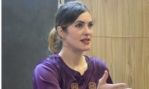 PPP moves FIA against blogger Cynthia Ritchie for 'slanderous' tweet on Benazir