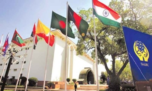 Senate panel wants Saarc to formulate joint anti-virus strategy