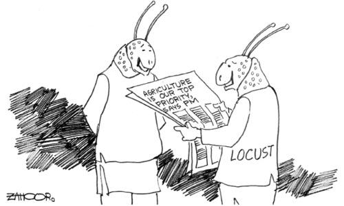 Cartoon: 1 July, 2020