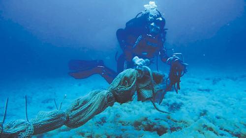Mediterranean marine life flourished during lockdown