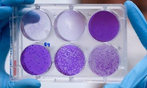امریکی کمپنی کی کورونا ویکسین مطلوبہ مدافعتی ردعمل فراہم کرنے میں کامیاب