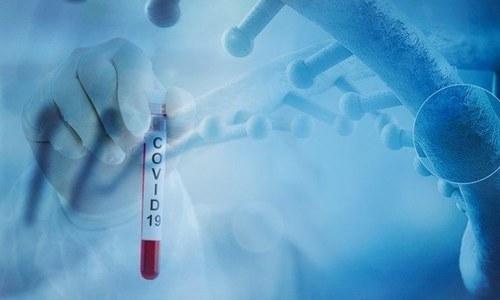 کورونا وائرس دل کو براہ راست نقصان پہنچا سکتا ہے، تحقیق