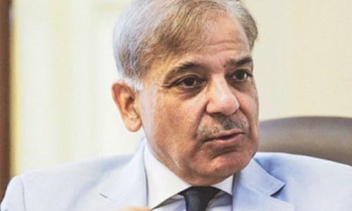 پائلٹس نہیں یہ حکومت، وزیراعظم اور وزیر جعلی ہیں، شہباز شریف