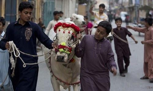 حکومت سندھ نے عیدالاضحیٰ کی تعطیلات میں ایک دن کا اضافہ کردیا