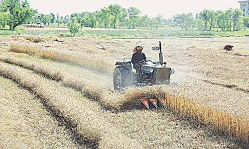 Banks disburse Rs1.2tr to agri sector in FY20