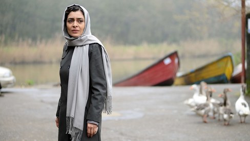 Iranian cinema allows for a glimpse of a country we rarely get to see