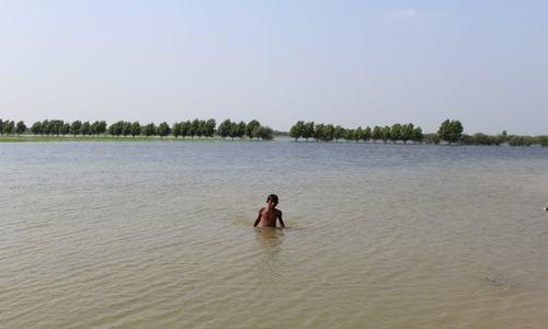 Migration, mosquitos and mismanagement — more than a million Mirpurkhas residents struggle after monsoon rains