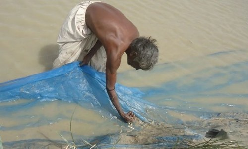 Fishing communities of Sindh forced into destructive practices
