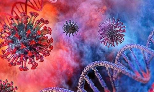 کووڈ 19 خون کے گودے کے خلیات کو نقصان پہنچا سکتا ہے، تحقیق