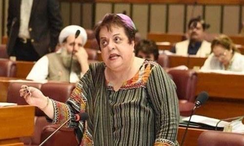 ایف آئی اے نے کسی صحافی، رضاکار کے خلاف مقدمہ درج نہیں کیا، وفاقی وزیر