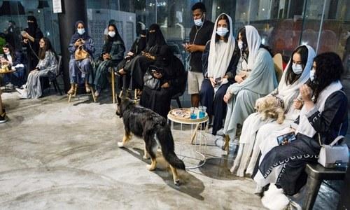 سعودی عرب میں کتوں کے لیے پہلا کیفے کھل گیا