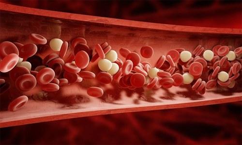 خون کی گردش کے مسائل کی نشانیاں اور بچاؤ کی تدابیر