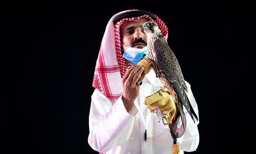 Falcon sells for record $170,000 in Saudi Arabia
