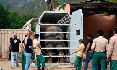 In pictures: Kaavan's mammoth journey from Islamabad zoo to new home in Cambodia