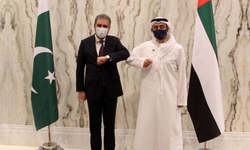 FM Qureshi meets UAE counterpart, apprises him of difficulties faced by Pakistani community