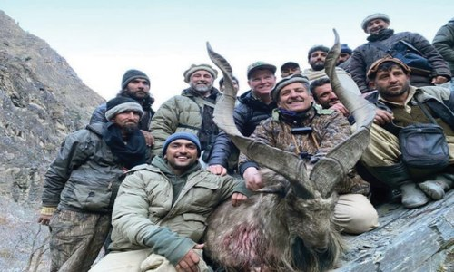 American hunts Kashmir Markhor in Chitral