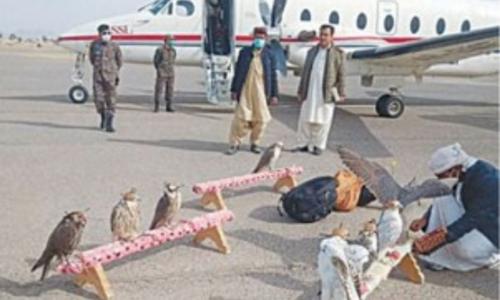 UAE royals arrive in Chagai for hunting Houbara bustards