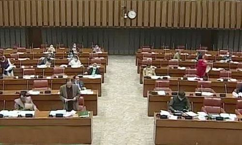Opposition walks out of Senate session over govt's 'unsatisfactory' response about CPEC Authority