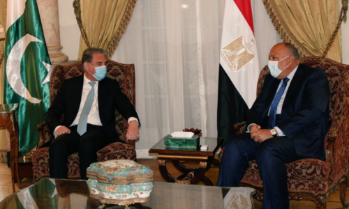 Qureshi discusses ways to strengthen bilateral ties in meeting with Egyptian counterpart