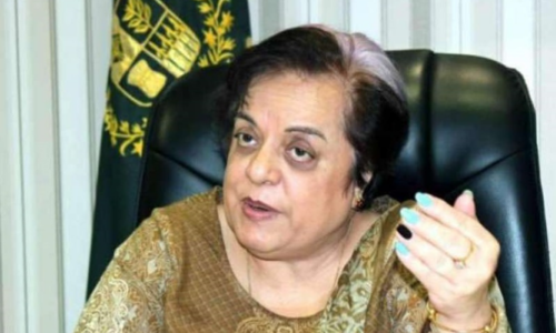 PM to meet 3-member representative committee of missing persons: Mazari