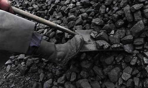 Coal accounts for 32pc of total power generation in January