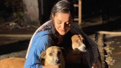 Ayesha Chundrigar is vaccinating Karachi's dogs but she needs your help