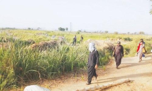 سکھر: انتقامی حملے میں ایک ہی خاندان کے 6 افراد قتل