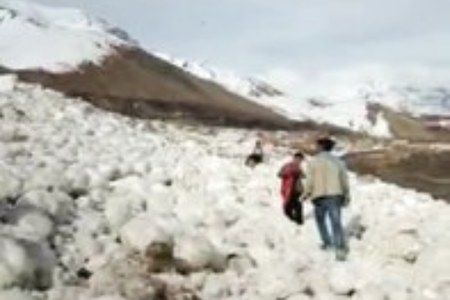 Scores of cattle perish in Chitral snow avalanche