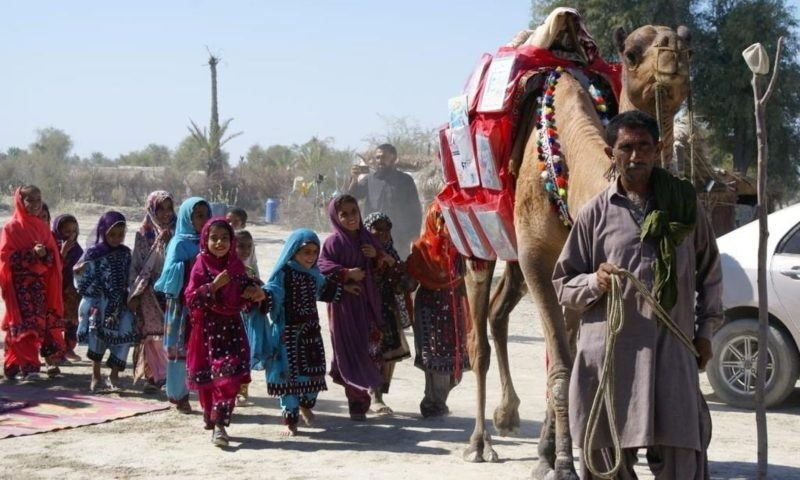 Roshan the camel brings books to homeschooling children in Balochistan