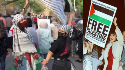 Israeli government targets model Bella Hadid as she joins pro-Palestine protesters in NYC