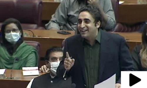 'نئے پاکستان میں گدھوں کی تعداد میں اضافہ ہوا'