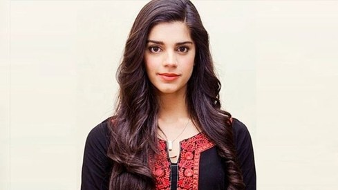 Sanam Saeed calls out Shireen Mazari for her silence on PM Imran's statement