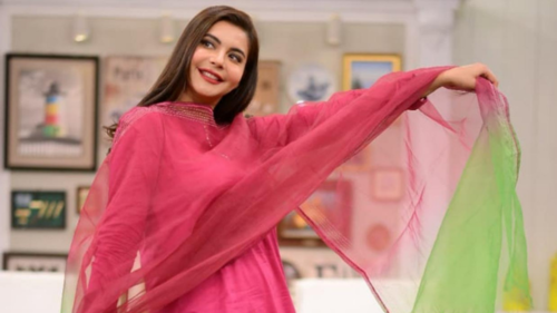 'They don't even spare children': Nida Yasir calls out trolls for making fun of her son's hair