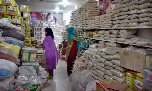Food import bill up 22pc in fiscal year's first month