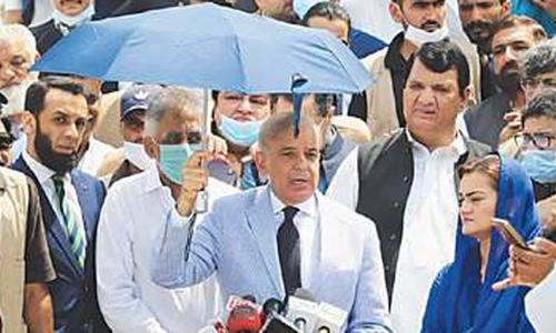 Shehbaz floats idea of national govt