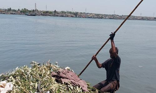 گلوبل وارمنگ سے متاثرہ کراچی کی ساحل پٹی