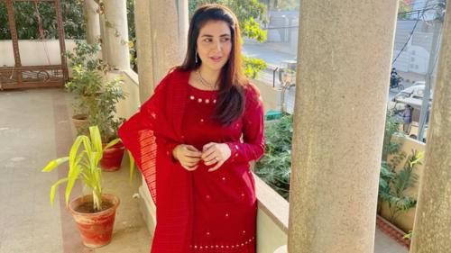 Actor Areeba Habib's upcoming drama Nehar tackles the issue of dowries