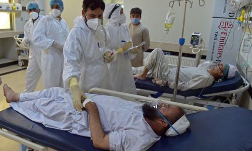 عالمی ادارہ صحت کی ٹیم کی کابل میں طالبان سے ملاقات