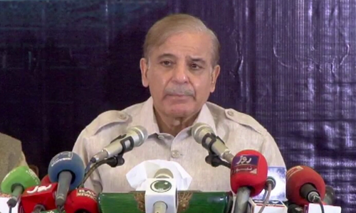 Shehbaz chides govt for paying lip service to inflation