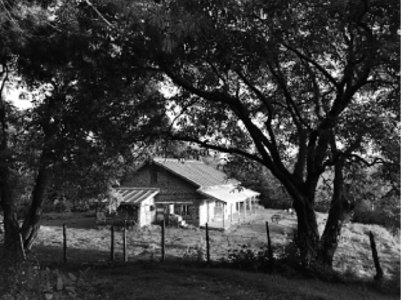 Forest rest houses deserve better upkeep