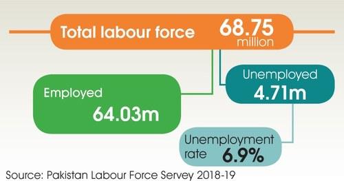 24pc graduates are jobless, Senate panel told