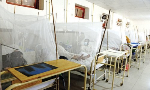 Dengue cases rising in twin cities