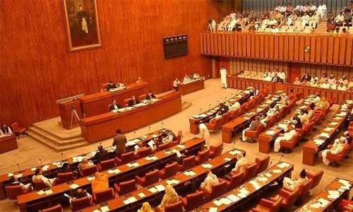 Opposition walks out of Senate to protest against 'petrol bomb'
