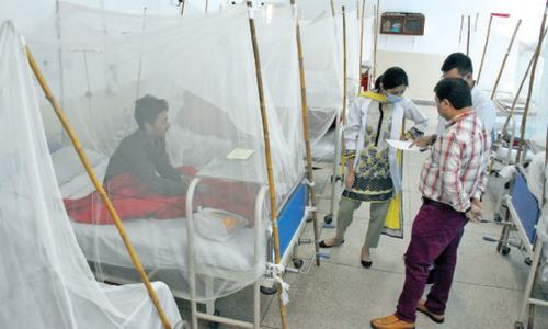 No let-up in number of dengue patients in twin cities