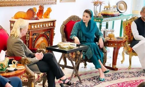US envoy's separate meetings show PML-N discord